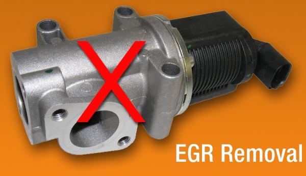 EGR Removal
